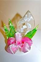 Орхидея Пинк